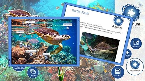Aquarium & Zoo